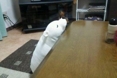 白クマくんのお出迎え